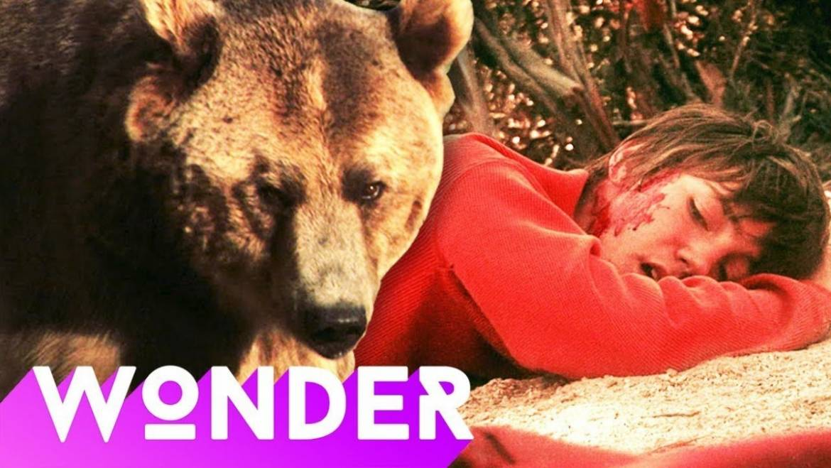 Grizzly Bear Booking Agency | Grizzly Bear Event Booking